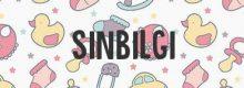 Sinbilgi